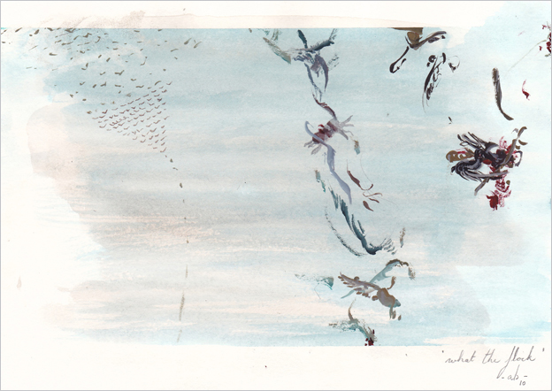 birds_c_omlijnd